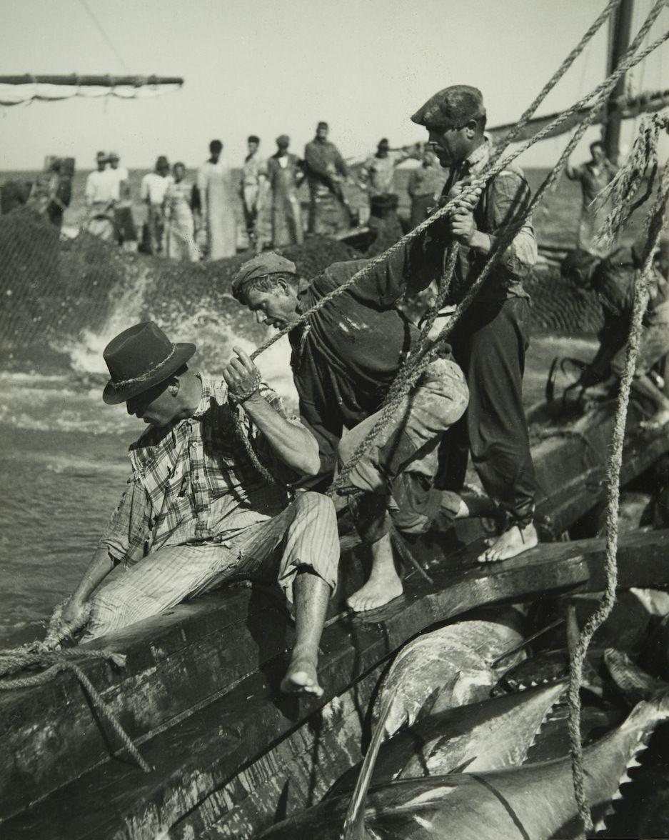 Cenas da Vida Piscatória. Tavira, década de 40.