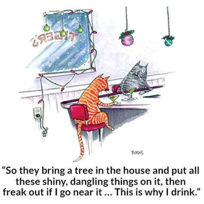 A Cat S Christmas Christmas Cats Christmas Cartoons Cat Drinking