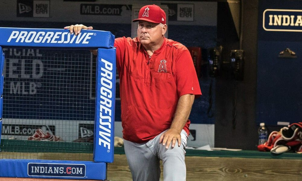 Pin by Merck on Mike Scioscia Los angeles angels, Mlb