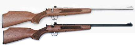 Pin by RAE Industries on chipmunk rifle | Chipmunks, Guns, Youth