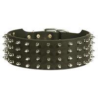 spiked dog collar