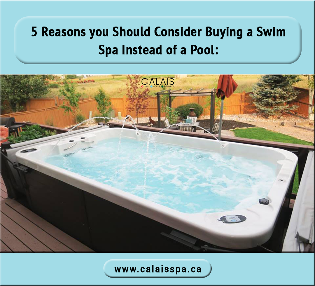 5 Reasons You Should Consider Buying A Swim Spa Instead Of A Pool 1 Swim Spas Can Be Used Year Round With Temperature Adjustmen Swim Spa Swim Spa Costs Pool