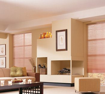 Single cell light filtering shades in living room (With