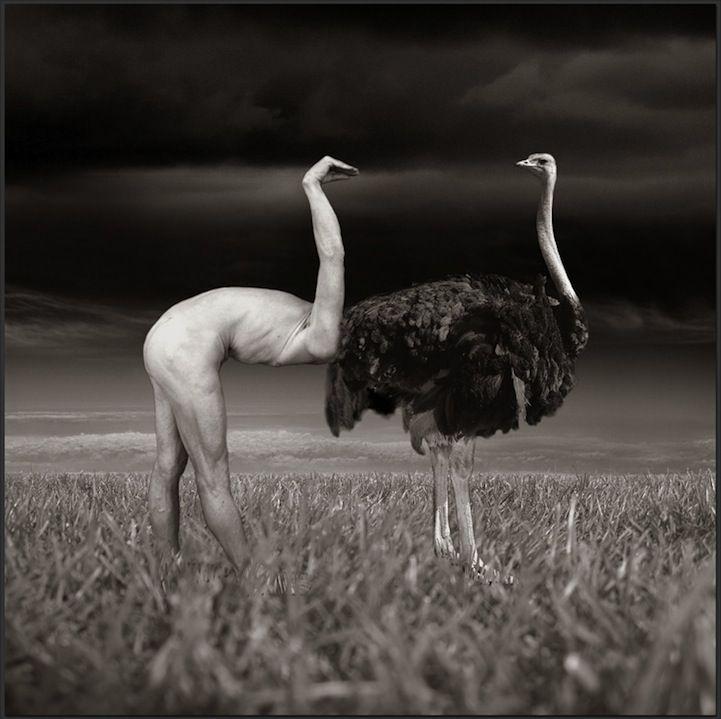 Surreale Fotografie von Thomas Barbéy :: Was is hier eigentlich los ::