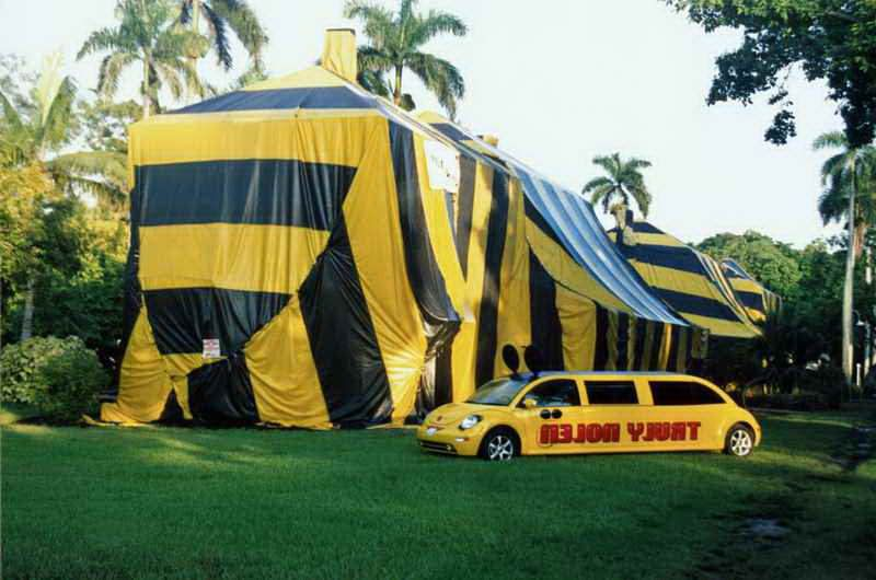 Cost Of Tenting A Home For Termites