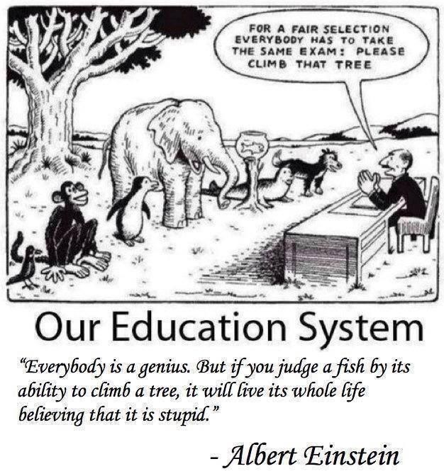 Our Unfair Educational System Well Illustrated Education