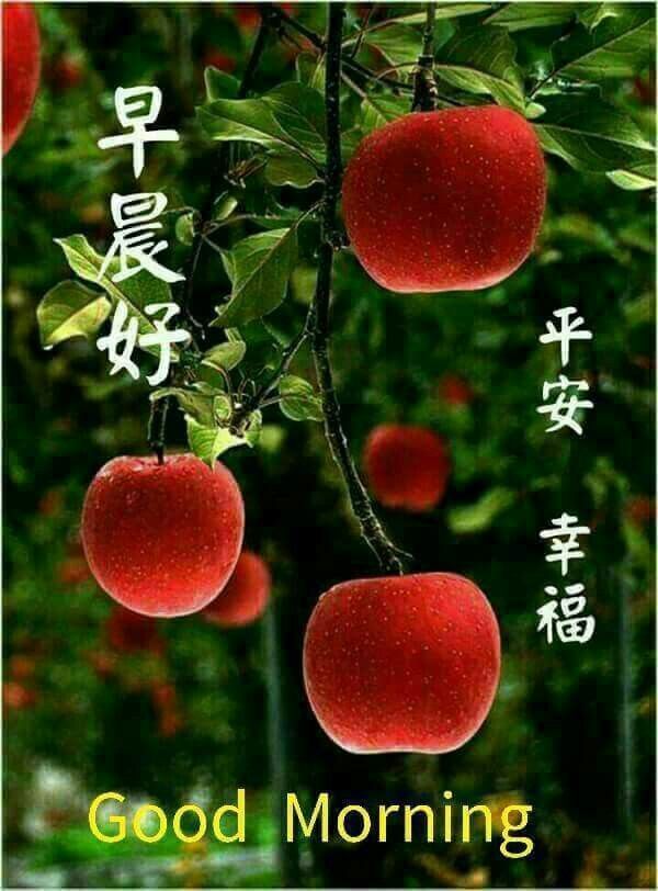 Good Morning Quotes With Fruits: Pin By May Chua On Good Morning Wishes In Chinese