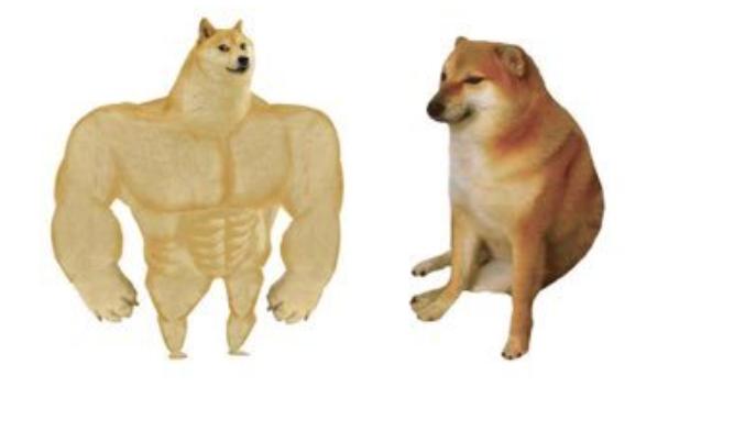 Doge Vs Cheems Es La Imagen De Un Perrito Musculoso Y Otra De Uno Que Luce Indefenso Y Que Refleja Como Han Cambiado Las Co Memes Perros Memes Memes Graciosos