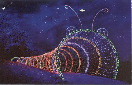 Green Bay Garden Of Lights Enchanting Wps Garden Of Lights Rainbow Favorite Places & Spaces  Pinterest Inspiration Design