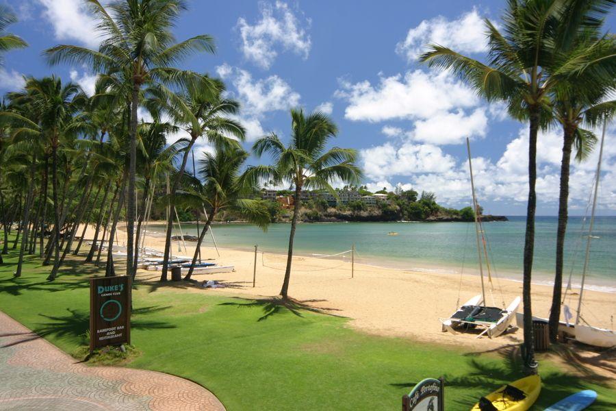 Park Art My WordPress Blog_How Old To Skydive In Hawaii