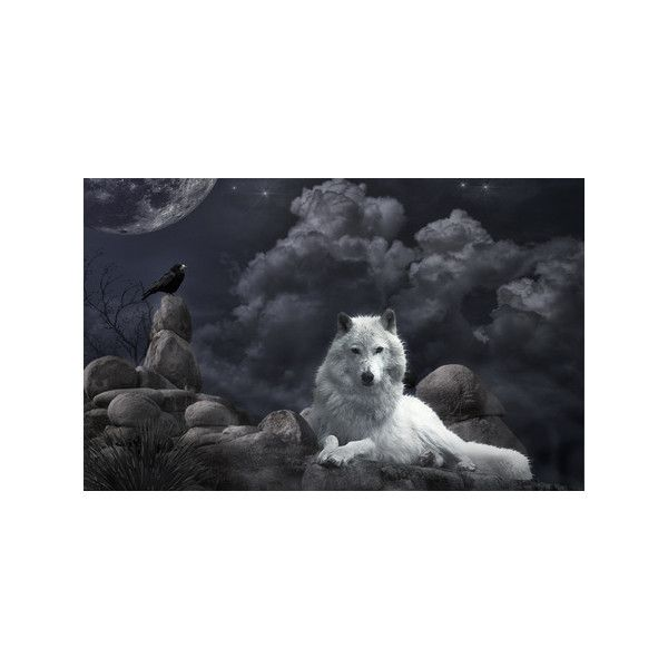 Night Guard - Other Wallpaper 249265 - Desktop Nexus Animals ❤ liked on Polyvore