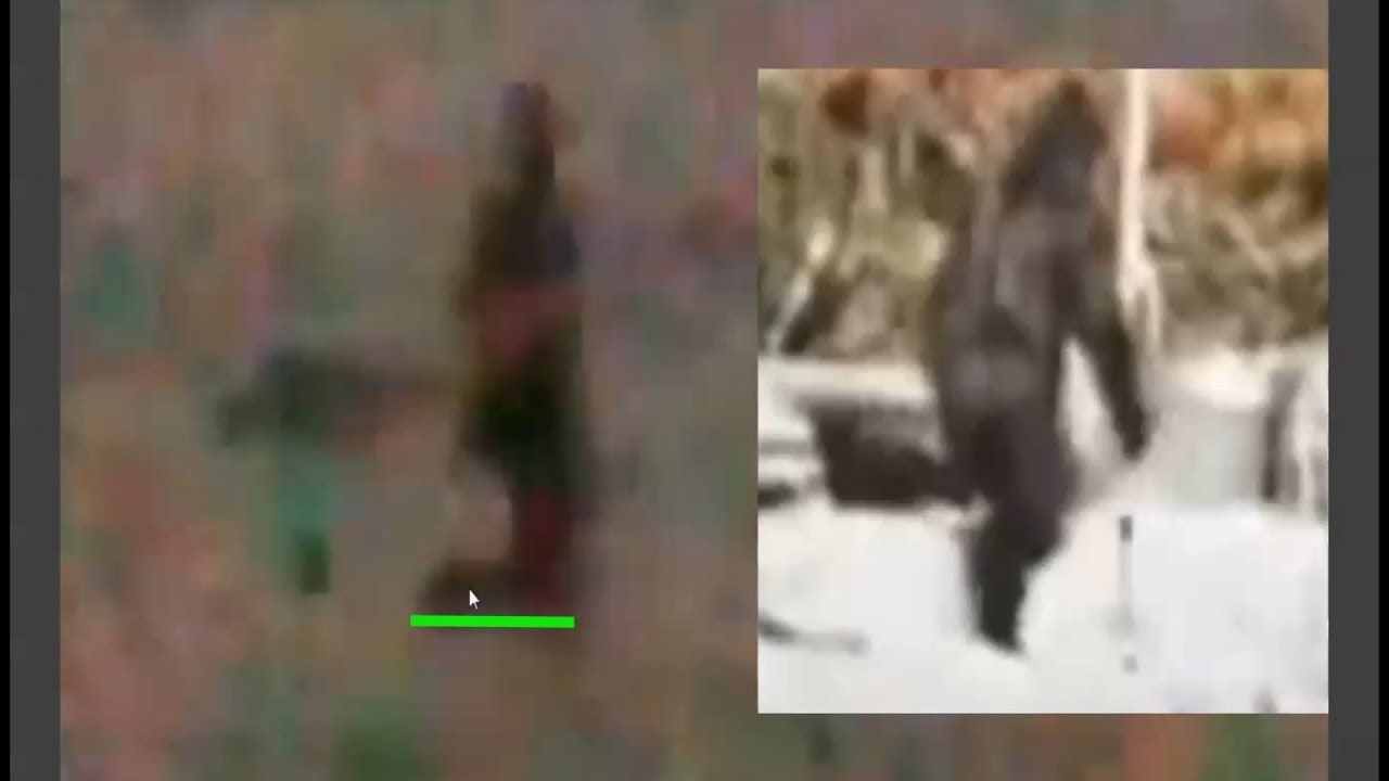 NEW! Bigfoot Sighting in Oregon (ThinkerThunker) - YouTube ...