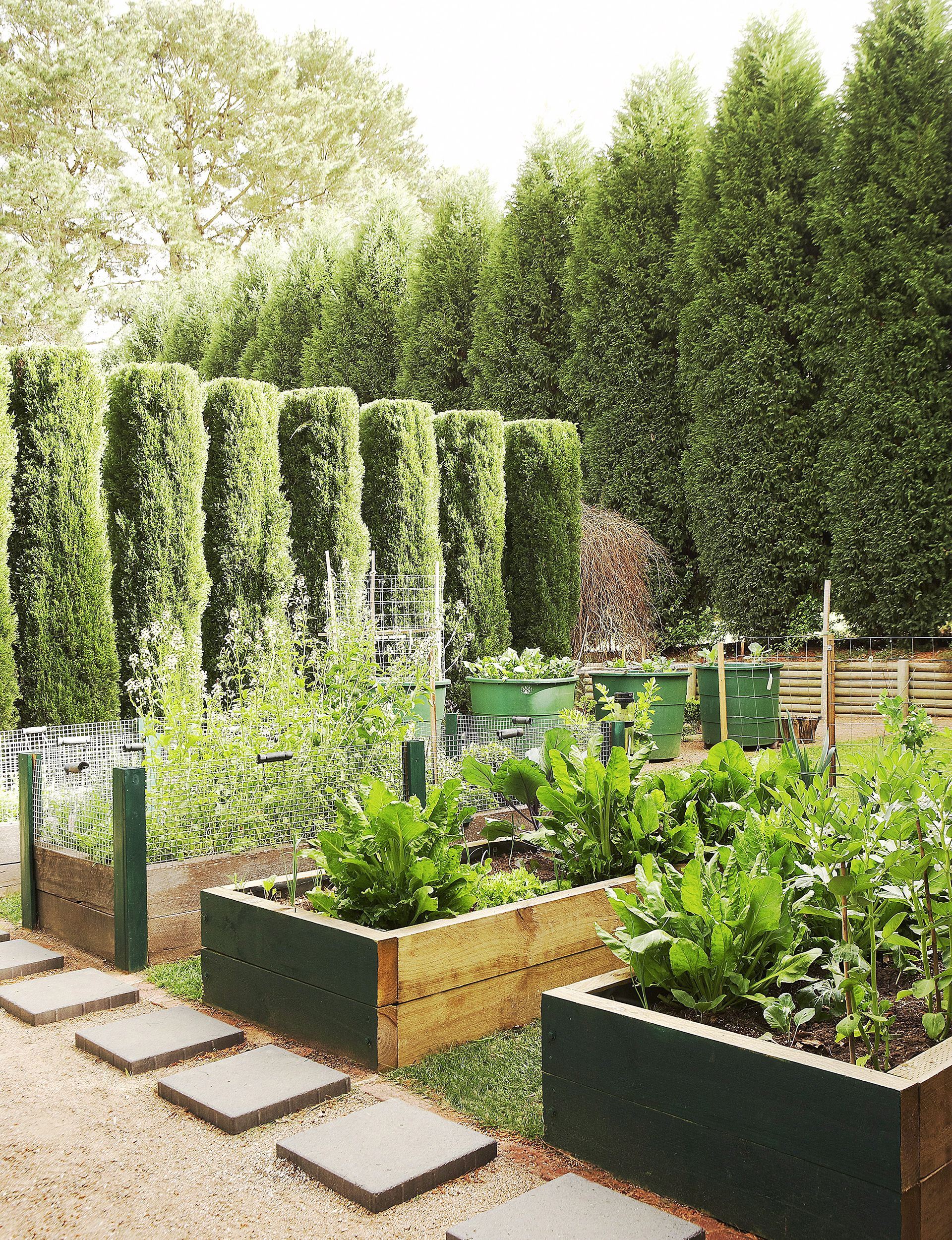 elegant vegetable gardens with outdoor space such a