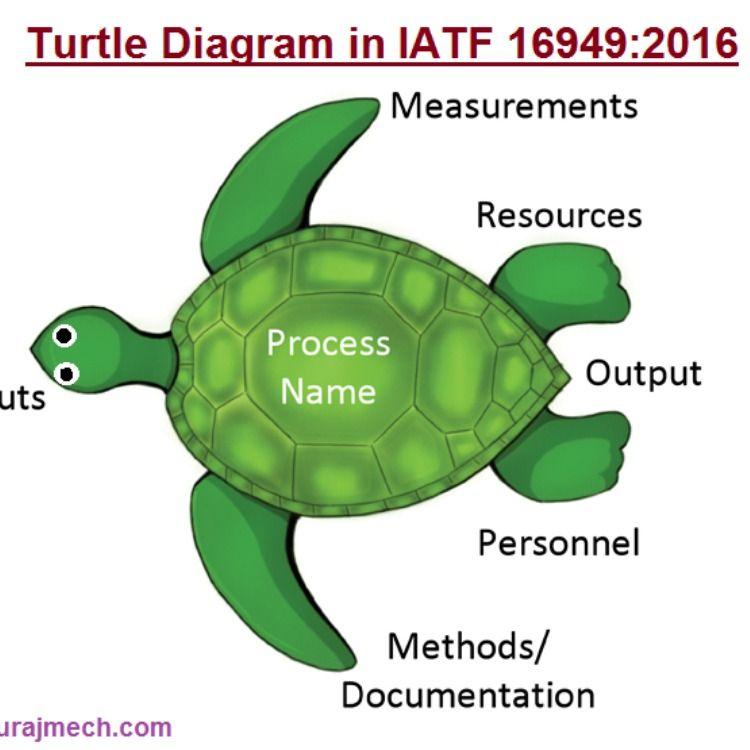 Blank Turtle Diagram Work Skills Skill Training Diagram