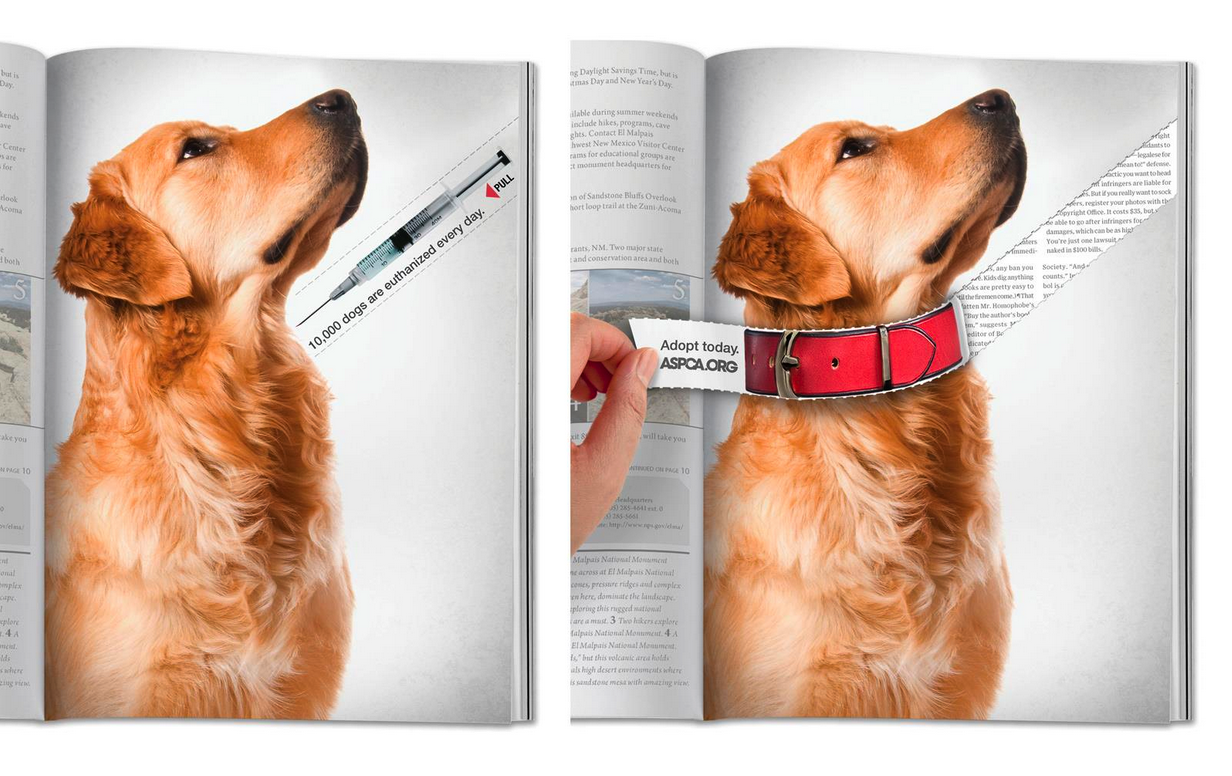 Clever Aspca Interactive Print Ad Adopt Today Funny Commercial Ads Print Ads Creative Advertising