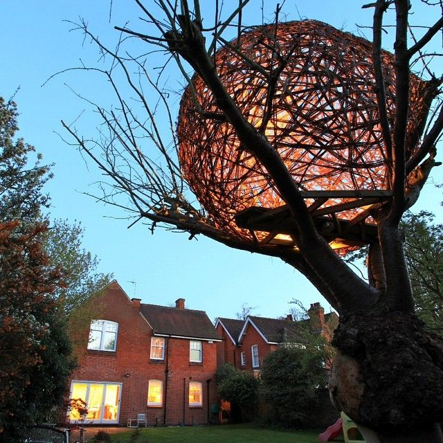 Explore Willow Tree Brancheore