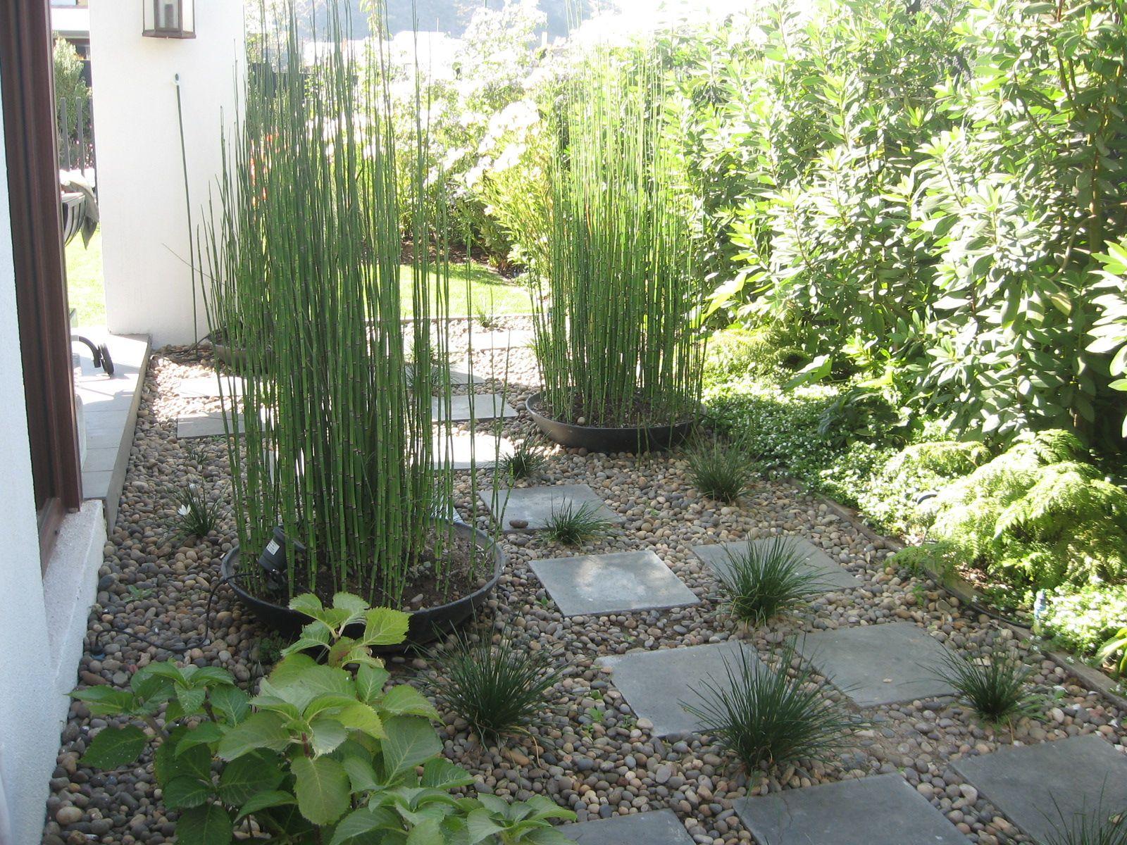 Patio con pailas vegetaci n pinterest patios - Jardines pequenos modernos ...