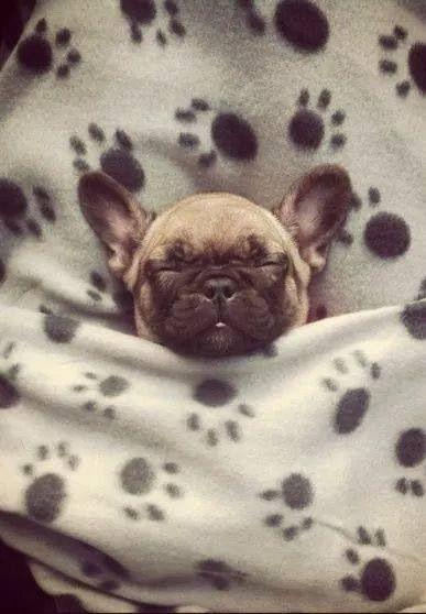 Sweet dreams sweetie!