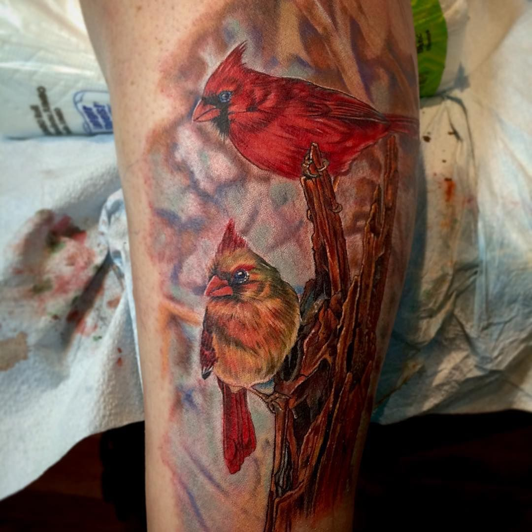 Cecil Porter On Instagram Some Little Cardinals On A Calf Nature Animal Bird Birds Wild Cecilporter Little Bird Tattoos Animal Tattoos Nature Tattoos