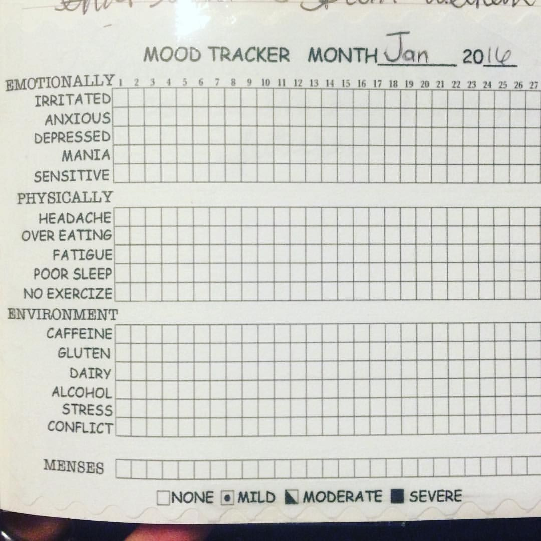 So I'm excited about this little mood tracker! I found one online but it didn't have all I needed so I customized it to my personal needs. I'm curious to see how this will look! Anyone else track their moods?