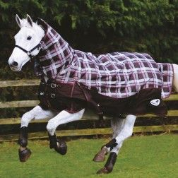 Turnoutmasta 350 Check Fixed Neck Heavyweight Turnout Horse