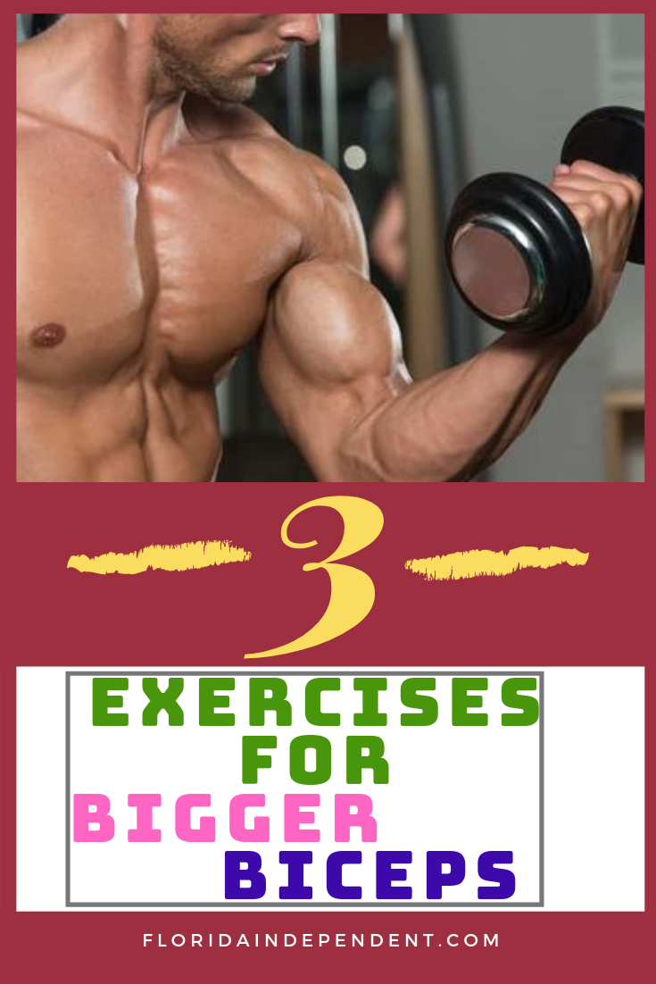 3 Exercises for Bigger Biceps.  #fitness #yoga #workout #fitnessmotivation #gym #exercise Fitness mo...