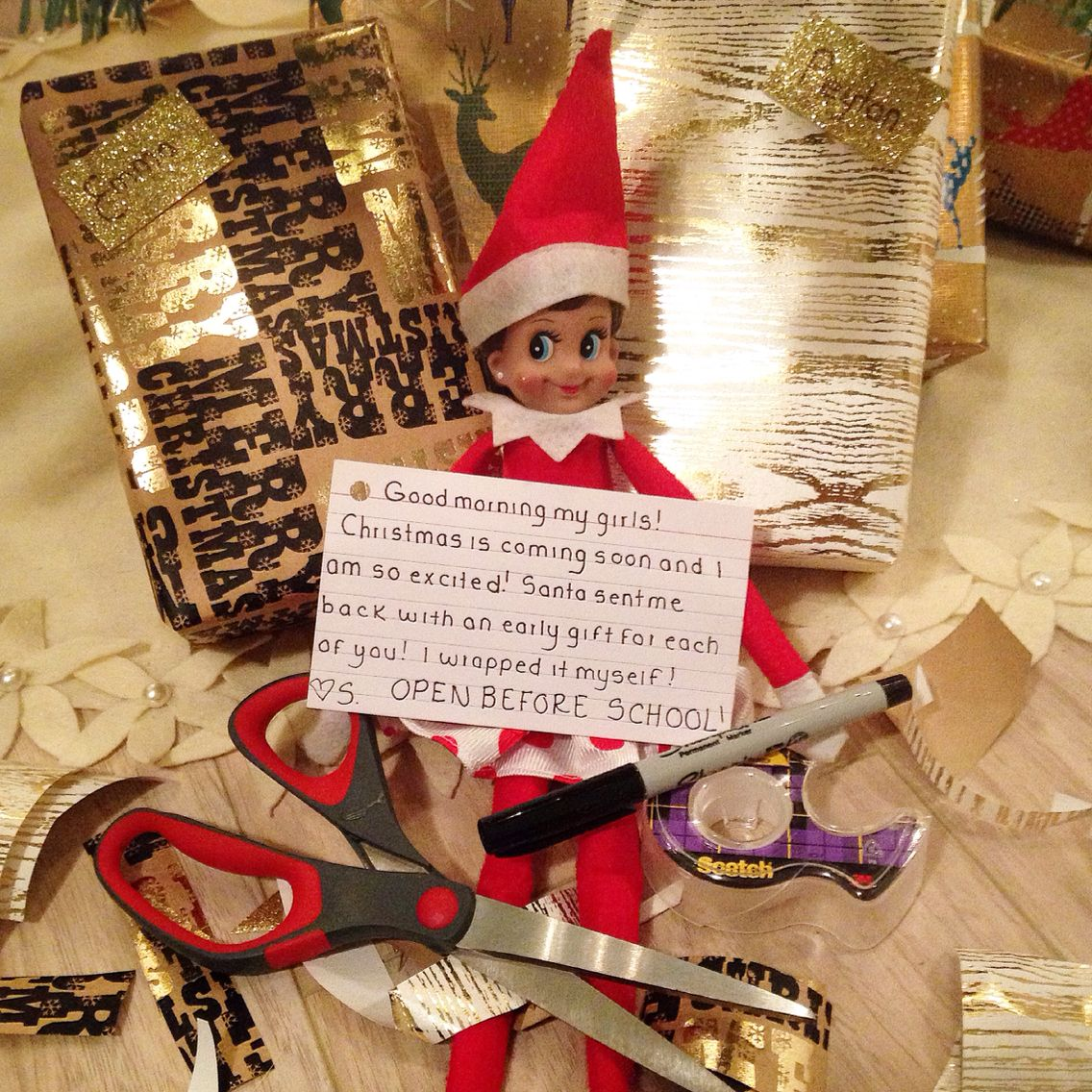 Elf brought back an early Christmas gift from Santas Workshop for ...
