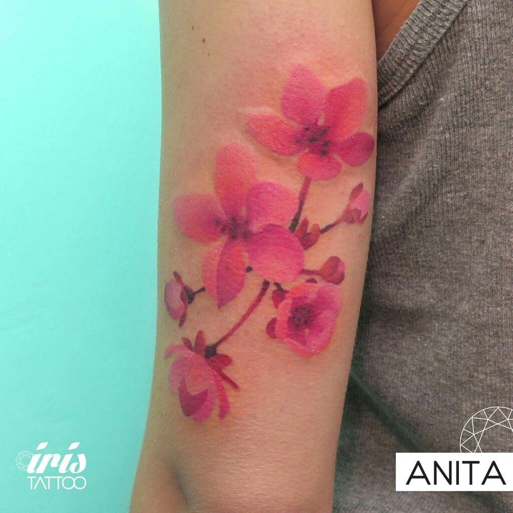 Pin by Kry on piercing y tatoo | Pinterest | Tatoo and Piercing