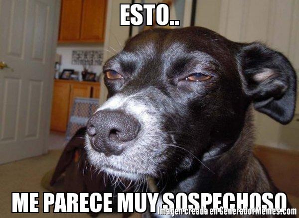 Pablo Esto Me Parece Sospechoso Muy Sospechoso Meme Busqueda De Google Funny Dog Faces Cute Animals With Funny Captions Funny Animal Pictures