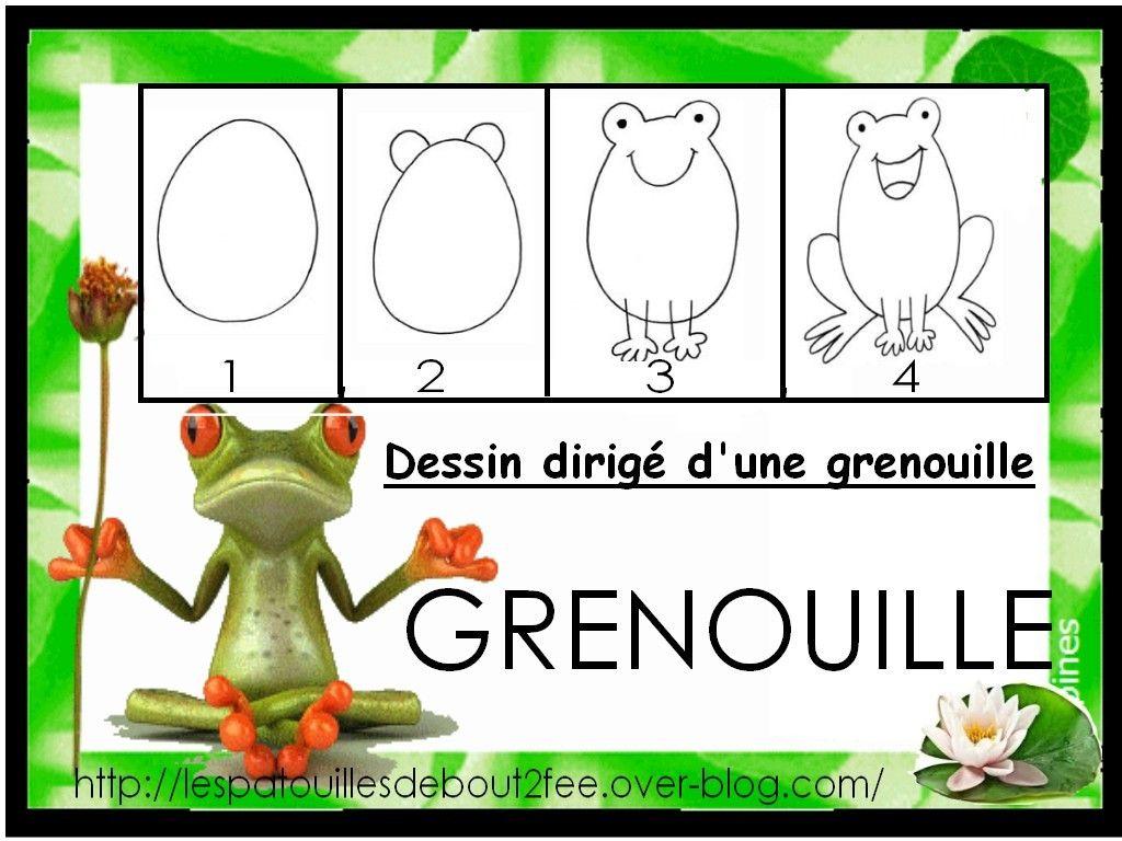 Je dessine une grenouille cole dessin grenouille - Dessiner une grenouille ...
