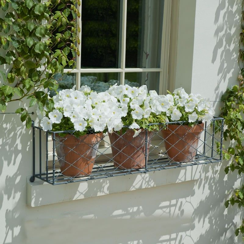 grey-window-box - Grey lattice metal window box from Garden Requisites. Perfect for Summer plants. & Take a look in 14 window gardens that could be described in one ... Aboutintivar.Com