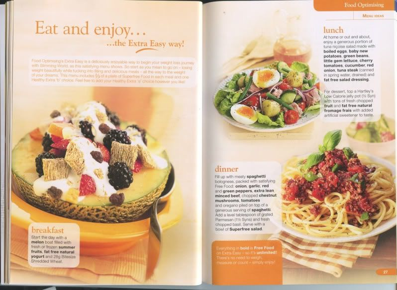 Slimming world food optimising book slimming world cook book slimming world food optimising book forumfinder Images