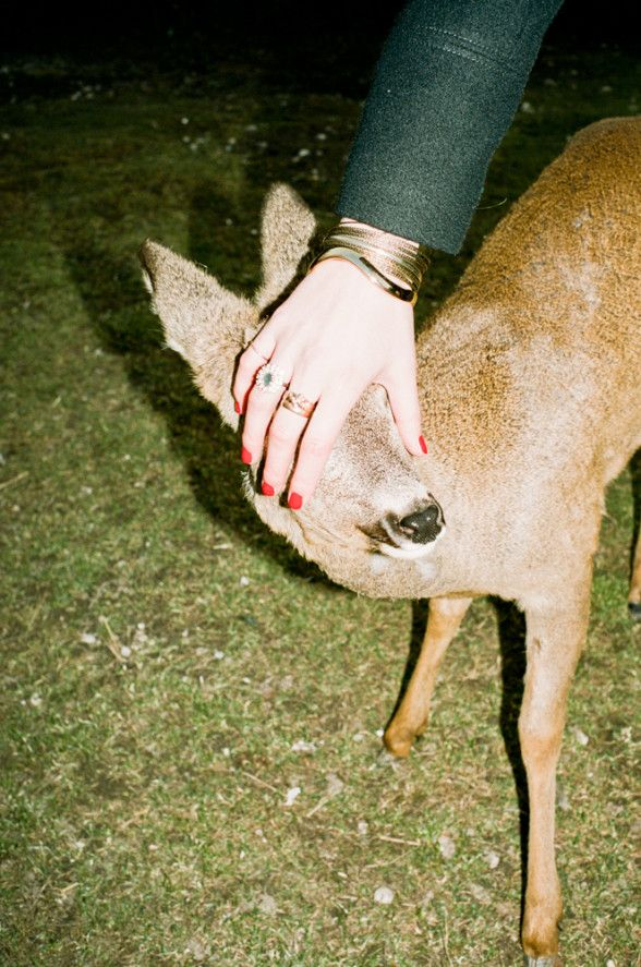 Radical, absurd and unexpected: we're addicted to snapshots from Lukas Gansterer | Photography | HUNGER TV
