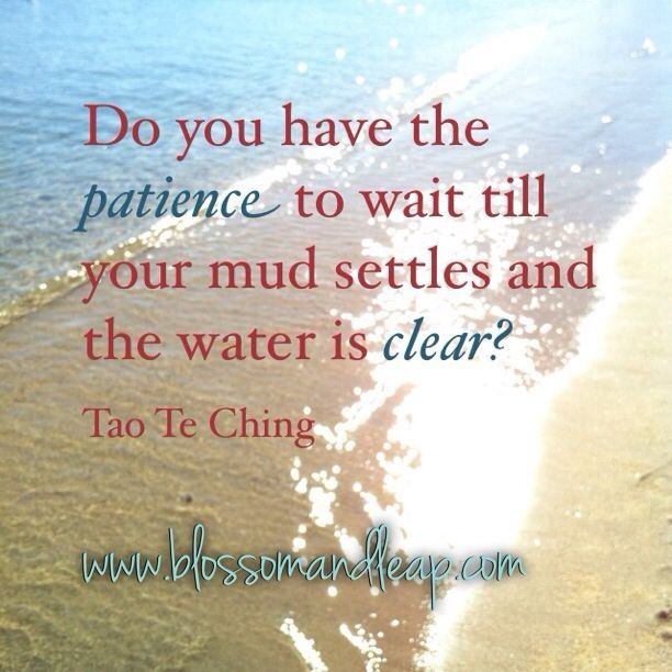 Do You Have The Patience To Wait Till You Mud Settles And The Water Is  Clear.