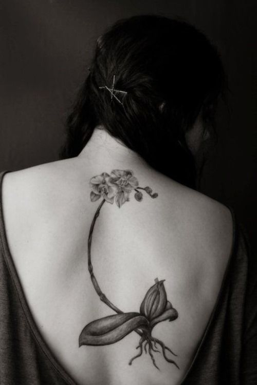 Pin by lemalin on fille sexy tattoo | Pinterest | Girl tattoos, Orchid  tattoo and Tattoo