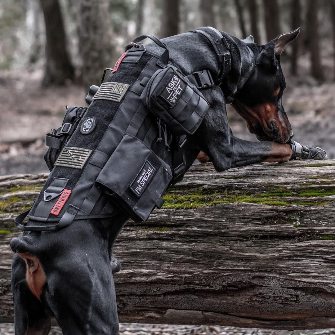 Onetigris Molle Service Dog Vests K9 Packs With 3 Pouches
