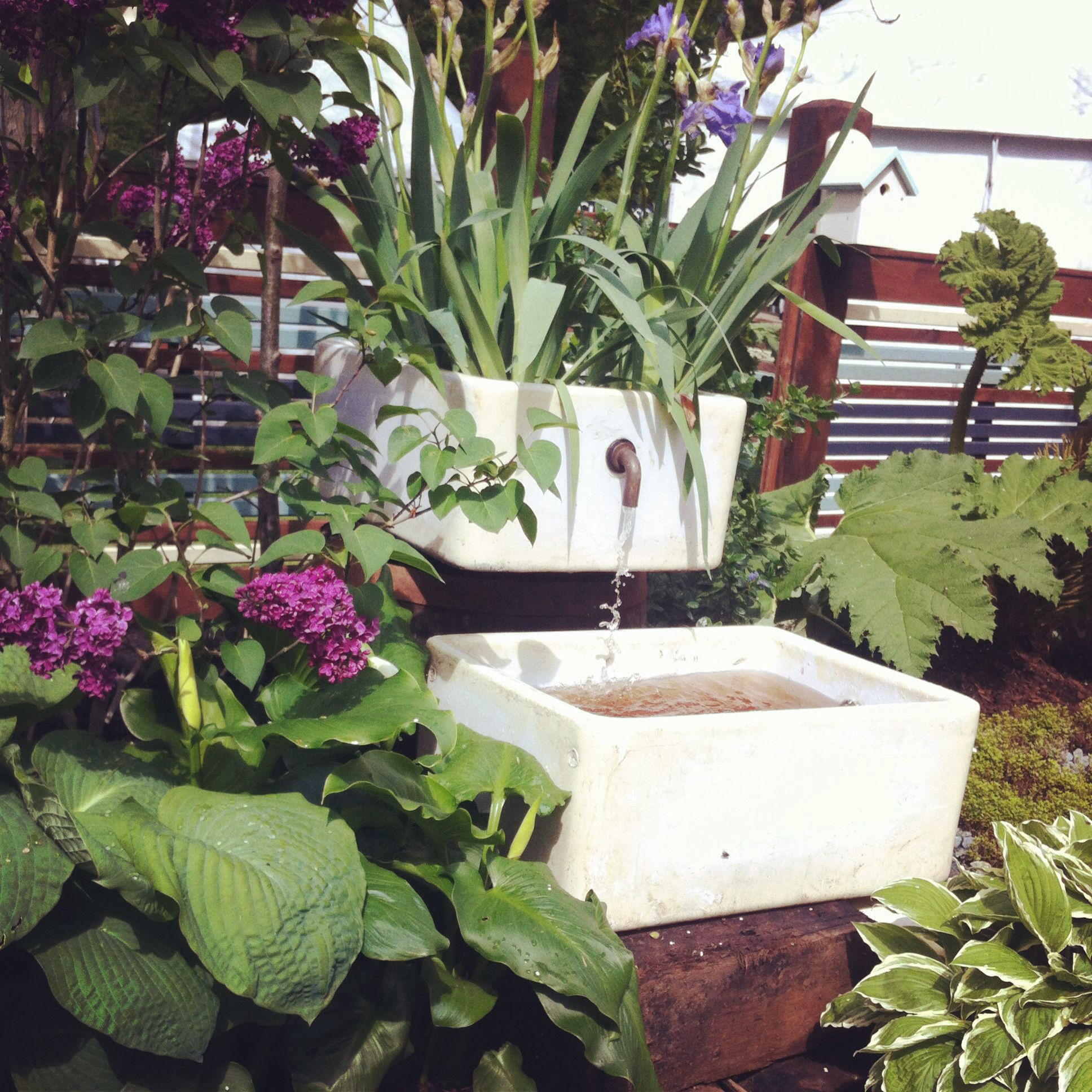 Belfast sink garden feature shed pinterest belfast for Garden feature ideas