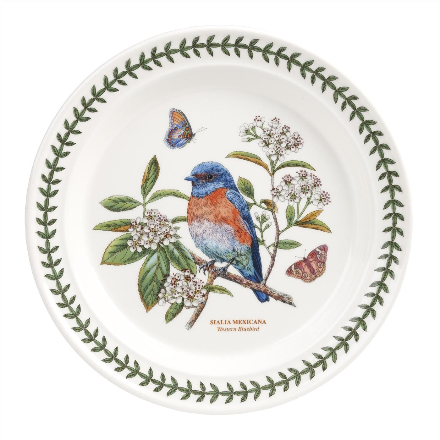 Portmeirion Botanic Garden Birds Set of 6 Western Bluebird Dinner Plates  sc 1 st  Pinterest & Portmeirion Botanic Garden Birds Set of 6 Western Bluebird Dinner ...