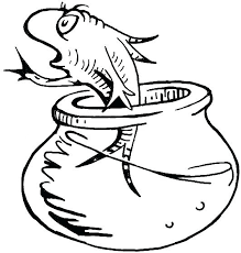 dr seuss coloring pages  google search in 2020  fish
