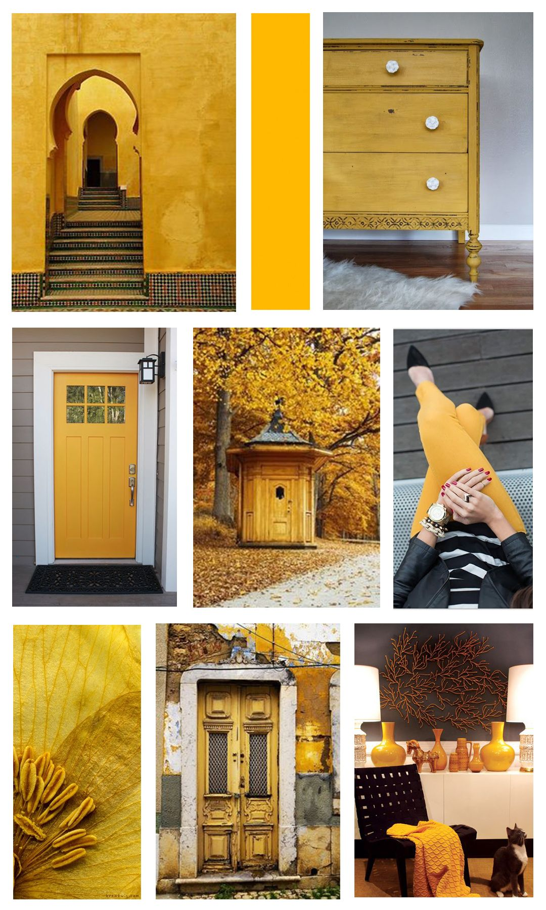 Colour of the month lemon shine moore inspiration from mountain home decor in bc also best color inspirations images paint colors colores paredes rh pinterest