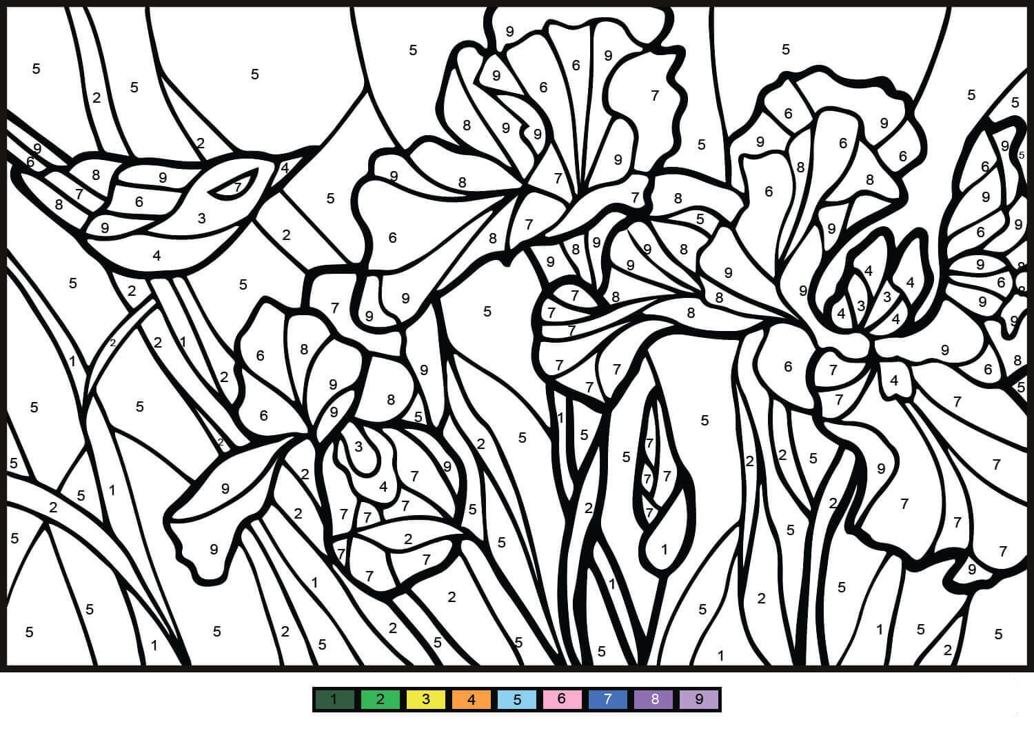 Irises Color By Number Coloring Pages Coloring Pages For Kids Color