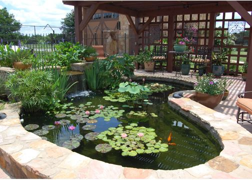 Ponds - Hill Country Water Gardens | Everything Outdoors | Pinterest ...