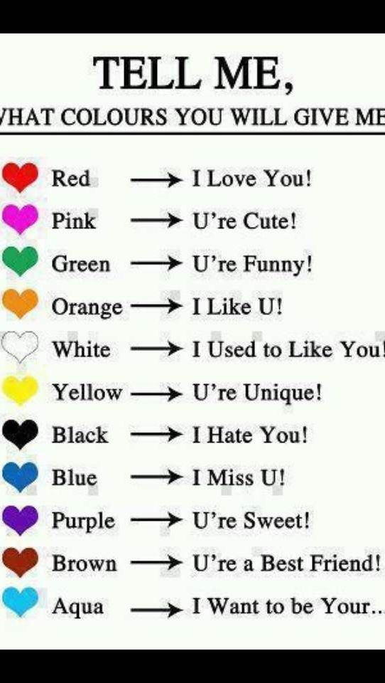 Colors Snapchat Funny Funny Snapchat Names This Or That Questions