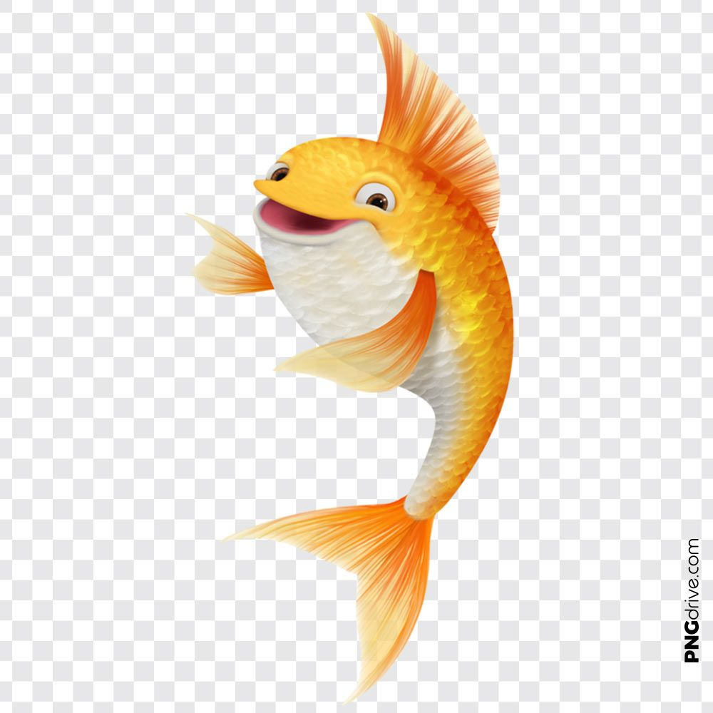 Pin By Png Drive On Gold Fish Png Fish Clipart Golden Fish Festival Design