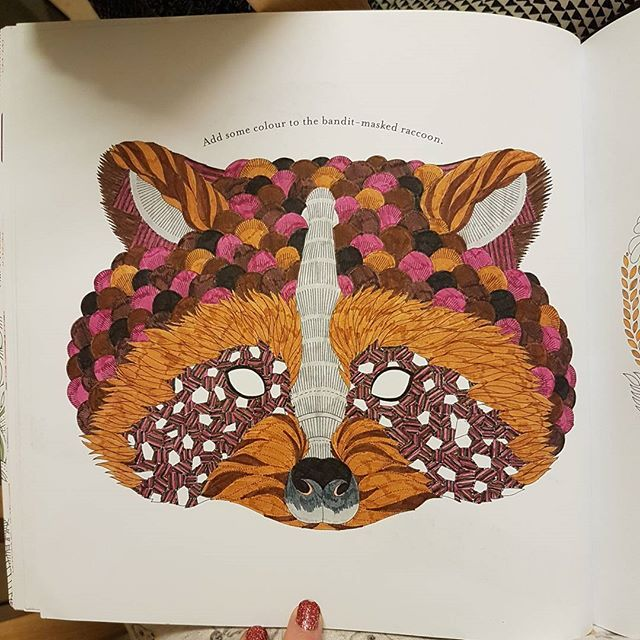 Animal Kingdom Colouring Raccoon : Racoon! #milliemarotta #milliemarottabooks #animalkingdom #colour