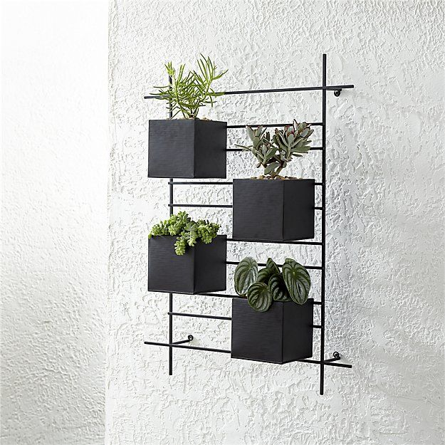 4 Box Wall Mounted Planter Crate And Barrel Fun For Herbs