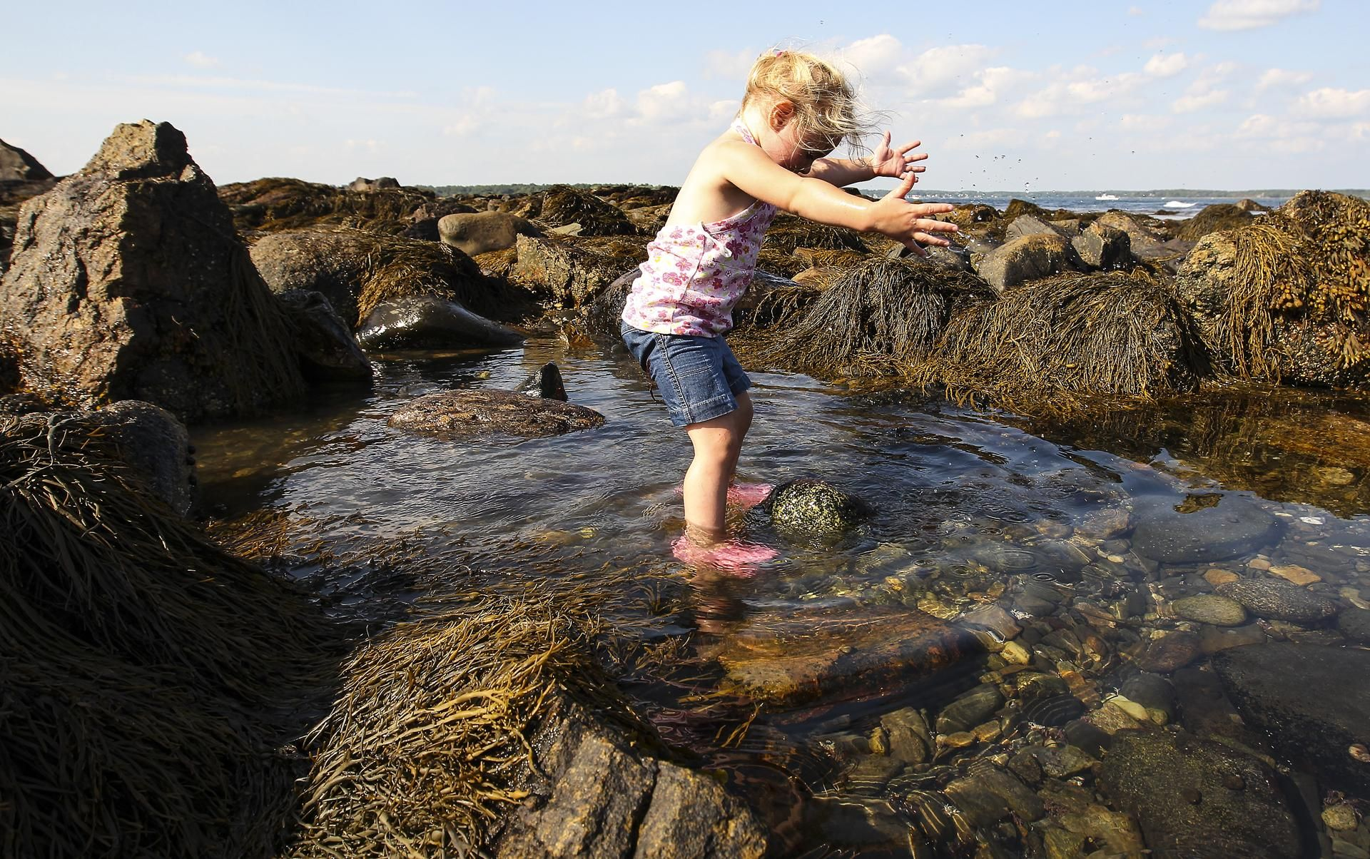What are the best beaches in new england tide pools beach and park rye nh wednesday aug 27 2014 mckenna dionne 3 nvjuhfo Image collections