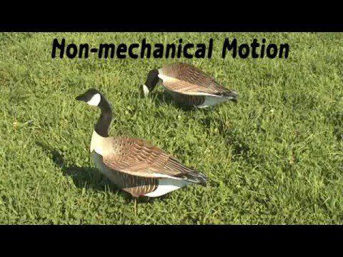 Interlocking 3D Canada Goose Silhouette Decoys | Waterfowl | Goose