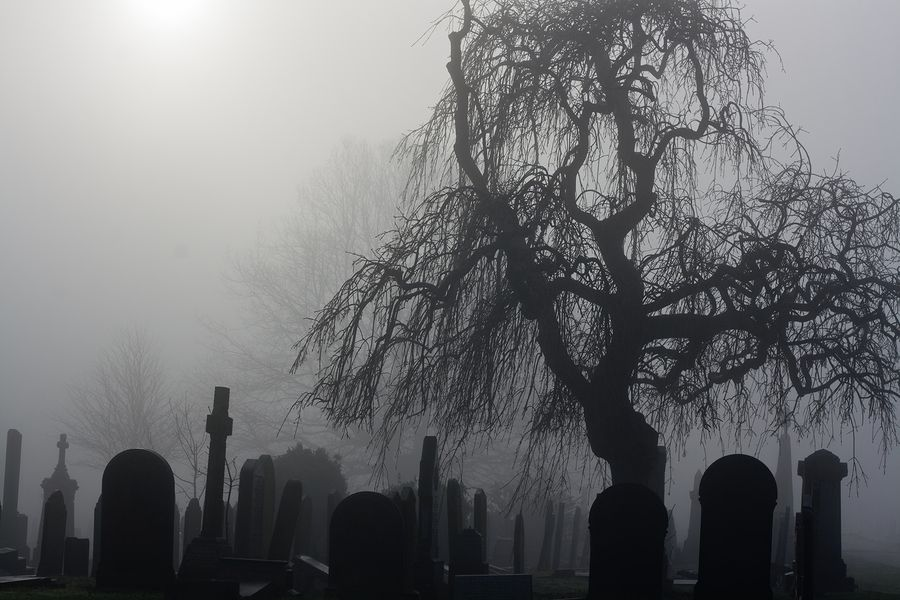 Bigstock Spooky Old Cemetery On A Foggy 40839412