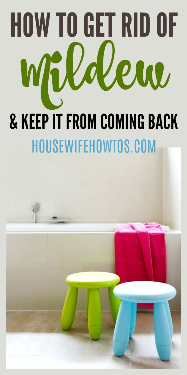 How To Get Rid Of Mildew And Keep It From Returning Mold In Bathroom Bathroom Mold Remover Mildew Remover